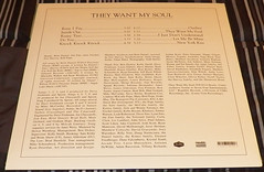 Spoon - They Want My Soul Limited Edition White Vinyl Back (patrickzaucha) Tags: vinyl spoon limitededition lps vinylrecords whitevinyl vinylcollection vinyllps limitededitionwhitevinyl theywantmysoul