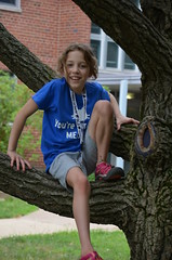 Laura in a tree... agian