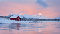 Norweigan sunrise (Pete Rowbottom, Wigan, UK) Tags: norway sunrise tromso lake sea mountains snow pink pinklight reflection waterreflections water scandinavian scandi dawn earlymorning peterowbottom nikond750 wide landscape norwaylandscape norweigan fjord barn outdoor waterscape trees snowscape norwaywinter light lighting goodlight delicate surreal wow beautiful troms photography solitary peaceful serene tranquil norge arcticcircle arctic cold weather freezing freeze ice snowy