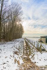 Winter_Beuningen-4 (stevefge) Tags: beuningen winter fields fence trees bomen ditch sloot farm snow sneeuw sky landscape gelderland nederland netherlands nl natuur nature nederlandvandaag reflectyourworld frozen