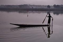 Nyaungshwe - le canal 6 (luco*) Tags: myanmar birmanie burma lac inle lake nyaungshwe nyaung shwe canal pêcheur fisherman intha man homme boat pirogue flickraward flickraward5 flickrawardgallery