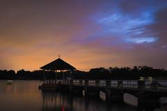 Gloomy Sky (elenaleong) Tags: lowerpeircereservoir gloomyweather sundown cloudy tranquil silhouettes reflections elenaleong reservoirpark rainforest longexposure