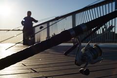 Fishing Rod (dtanist) Tags: nyc newyork newyorkcity new york city sony a7 canon fd 50mm brooklyn coney island steeplechase pier boardwalk fishing rod rods fisherman fishermen pole poles