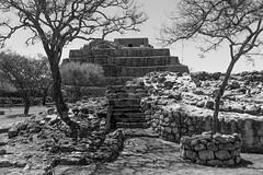 DSC01133 (blueeyedpop) Tags: mesoamerican pyramid ruins