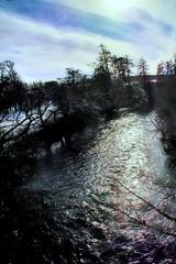 Spey shimmer (Fr Paul Hackett) Tags: river spey sunshine trees water