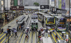 Rain Day (GeorgeChoy Photography) Tags: hongkong people crosswalk busses busy trafic asia street