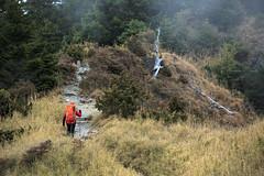 On the road _IMG_4104 (阿Len) Tags: 6d landscape taiwan 台灣影像 風景攝影 trekking hiking 登山 健行 高海拔山區 雪霸國家公園 雪山主東 雪山 mountain mtsyue syuemountain syuemountaintrail 70300 小小黑 ef70300mmf456isusm