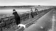Balderhead . (wayman2011) Tags: fujifilmxt10 lightroom wayman2011 bwlandscapes mono people dogs doris jackrussels reservoirs dams pennines dales baldersdale teesdale balderhead countydurham uk
