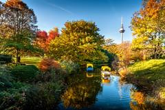 Luisenpark Mannheim (Michele Naro) Tags: luisenpark mannheim badenwürttemberg rheinneckargebiet deutschland d80 samyang14mmf28 nikond80 nikon germany germania visitgermany wonderlustmannheim