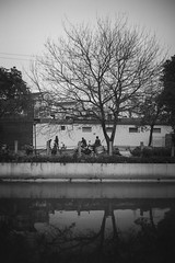 RIVER (New unicorn) Tags: blackwhite street streetphotography tree architecture refelction peaceful people spring river sky landscape scenery scene view monochrome