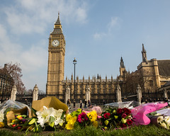 20176292 (sinister pictures) Tags: floraltributes rememberance westminster terrorattack victims terrorism london uk flowers parliamentsquare england unitedkingdon gbr