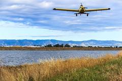 Rice Seeding-1068 (Western Farm Press) Tags: rice california farming agriculture sacramentovalley