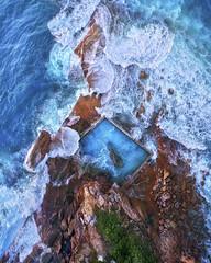 North Curl Curl (Jay Daley) Tags: sydney nsw australia dji sony a7r2 aerial drone ocean pool