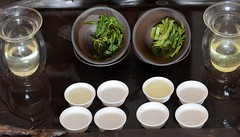 im Überblick (cha.shifu) Tags: berg anhui gelber grüntee rarität houkui chashifu taiing