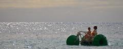 Cruising (Ctuna8162) Tags: beach hawaii waikiki oahu honolulu