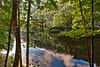 Reflections on the Lac de Moron, the Doubs River in summer. Reflets sur le Lac de Moron, le Doubs en été.No. 5955. (Izakigur) Tags: switzerland izakigur flickr lafrance barbara barbarastreisand nikon nikkor d700 disquandreviendrastu doubs lacdemoron reflection green sautdudoubs lachauxdefonds tchaux tree nature summer cantondeneuchatel barrage lebarrageduchâtelot vert hdr pov 100faves 200faves lepetitprince 300faves 400faves 500faves 600faves svizzera suiza سويسرا suíça suisse europe europa ilpiccoloprincipe thelittleprince swiss schweiz nikond700 wasser acqua מים ماء