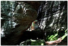 Geological Artistry (Tustin Designs) Tags: sun nature june moss boulders westvirginia shade geology 2014 coopersrocksstatepark dailynaturetnc12