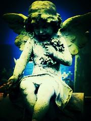 angel2 (Reija-Marika) Tags: ocean blue sea graveyard cemetary sydney australia angels waverly angelswings