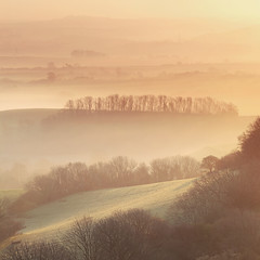 Golden Edges (Tony Gill) Tags: morning mist golden countryside hills valley dorset