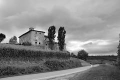 Langhe1 (riccardo.bordese) Tags: vacation bw italy blackwhite wine alba piemonte cuneo piedmont barolo barbera langhe 2014 dolcetto beiposti focuspocus