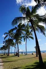 Hawaii, Waikiki (four years) Tags: beach snorkel waikiki oahu waikikibeach honululu hawaiiflowers waikikisunset gingerflowers hanaumabayparade