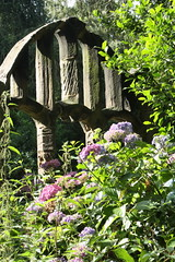 Holy & hydrangea (Anita K Firth) Tags: blue flower church window religious hall ruins arch religion lilac cannon hydrangea ruined barnsley cannonhall cawthorne