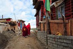 On top of Larung Gar between the huts, Tibet 2013 (reurinkjan) Tags: monastery 2013 བོད་ལྗོངས། ©janreurink tibetanplateauབོད་མཐོ་སྒང་bötogang tibetབོད buddhistསངས་རྒྱས་ཆོས་ལུགས་པ nunneryཨ་ནི་དགོན་པ་anidgonpa monkགྲྭ་བ།grwaba buddhismསངས་རྒྱས་ཆོས་ལུགས།sangsrgyaschoslugs greatertibetབོད་ཆེན་པོböchenpo tibetannationalitytibetansབོད་རིགས།bodrigs tibetannationtibetanpeopleབོད་ཀྱི་མི་བརྒྱུདbökyimigyü nunཇོ་མོ།ani sisterhoodཨ་ནིའི་ཚོགས་པanitsokpa khamཁམས།easterntibet ༢༠༡༣ khamཁམས་བོད khamsbodkhamwö sertalགསེར་ཐར།countyserthar larunggarབླ་རུང་སྒར། nyingmapahermitage foundedbydudjomlingpainthelate19thcentury khenpojikpunalsorecognizedastertonsogyeltheincarnationoflerablingpa gyutrullhakhang gyultrullhakang tonpeidekhang monasticcollegeshedraoflarunggar
