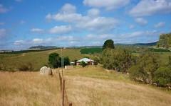 Celeys Creek, Jerangle NSW