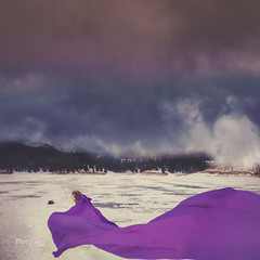The Frigid Journey (Flor Blake) Tags: winter snow purple queens tropical whimsical