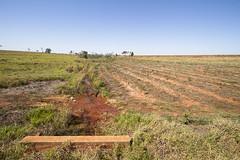 Afluente da Margem Direita do Rio Tiet - Fazenda Bonana-Sud Menuci/SP (ana.druzian) Tags: rio do da fazenda tiet margem direita afluente bonanasud menucispafluentegua