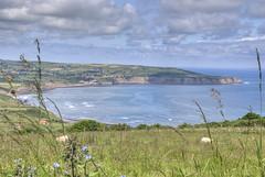 Robin Hood's Bay (stevefge) Tags: uk landscape coast yorkshire northsea northyorkshire robinhoodsbay eastyorkshire ravenscar d80 fossilcoast