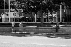 On The Wall (Matt M S) Tags: city cambridge urban ontario canada project downtown king metro kitchener waterloo area region metropolitan 1000 core kw southwestern tricities mattsmith kitchenerwaterloo downtownkitchener kitchenerontario waterlooregion kitchenerdowntown kitchener1000 kitchener1000project dtklove kwontario