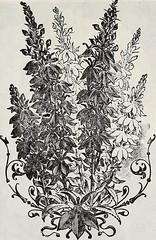 Anglų lietuvių žodynas. Žodis mentha longifolia reiškia <li>mentha longifolia</li> lietuviškai.
