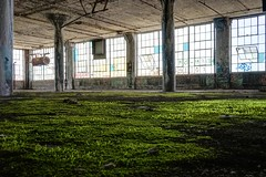 Nature is taking back (Mathias_Berlin) Tags: travel abandoned industry moss ruins factory decay michigan sony detroit urbanexploration fullframe rustbelt urbex industrialdecay fisherbody forgottenplaces fisherbodyplant21 vollformat verlasseneorte vergesseneorte sonyilce7