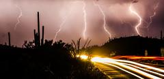Desert Lightning (rellet17) Tags: road travel arizona cactus storm car rain weather night clouds danger lights desert tucson tail journey monsoon thunderstorm lightning saguaro