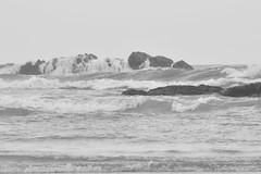 white covering (b pic_) Tags: travel sea india seascape blackwhite waves kerala monsoon arabian beachshot