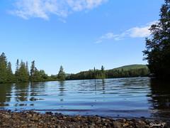 Tranquility Lake (Yolanta Z) Tags: nature scenery stagathe