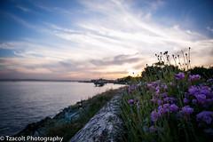 Sunset at Myrtle-Edwards (tzacolt_photogr