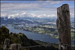 _SG_2014_08_0013_IMG_4085 (_SG_) Tags: sea panorama mountain mountains berg schweiz switzerland see suisse top queen berge outlook ausblick splendid zugersee swissmountains rigi ontop rigikulm panoramicview 1797 fernweh kulm centralswitzerland zuger schweizerberge splendidview queenofthemountains zugersea seazug