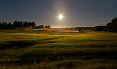 Field of Dreams (MilaMai) Tags: blue trees light sunset summer sky sun house field grass forest suomi finland landscape outdoors golden countryside colorful daytime canon1022 canon7d milamai