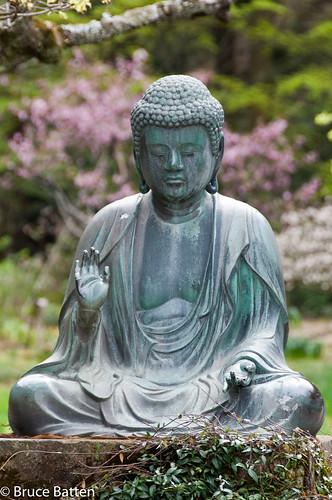 100409 Buddha @ Tokeiji, Kamakura.jpg