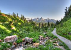 Mt. Rainier - Alpine Meadow (zendt66) Tags: trees mountain us washington nationalpark nikon nw pacific northwest meadow alpine mtrainier hdr d90 photomatix villagetours zendt66