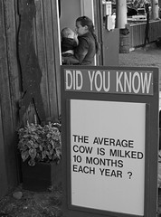 Did you know? (peter.a.klein (Boulanger-Croissant)) Tags: blackandwhite bw woman baby canada blanco rural cow milk funny noir bc noiretblanc britishcolumbia farm negro humor mother agriculture countyfair weiss blanc schwarz