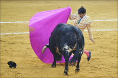 Jose Tomas 0211 (likamccuntz) Tags: feria bullfight malaga malagueta matador tauromaquia corridadetoros josetomas