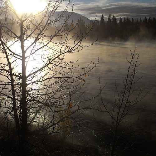 Sunrise over Grey Mountain warms the freezing #Yukon River #yxy which creates a white mist of water vapour #fall #weather
