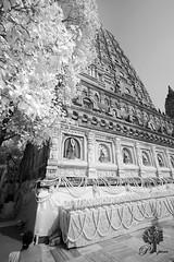 India_0159