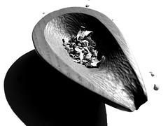 Tony Brennan Woodcarving (Frank Milling) Tags: county wood kilkenny ireland dublin art galway design artistic furniture handmade cork traditional craft belfast bowl crest manual trim wicklow wexford tipperary clonmel waterford limerick munster connacht louth woodcarving drogheda ulster navan bespoke dundalk meath gaa ardee leinster newry dunleer