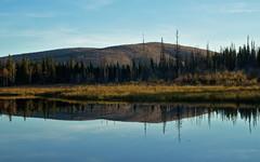 Pond Reflections (Lee Petersen - lwpetersenphotography.com) Tags: autumn lake reflection fall alaska pond fairbanks chenahotspringsroad