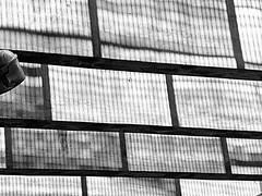 Rejillas proyectadas | Projected grids | Griglie proiettate (Raul Jaso) Tags: shadow blackandwhite muro byn blancoynegro geometric lines wall subway pared blackwhite mexicocity df pattern shadows metro patterns ombra sombra shades bn ombre line shade walls parete rectangle sombras ciudaddemexico linea paredes biancoenero patron rectangles muri lineas muros geometria patrones linee lametro pareti geometricfigures figurasgeometricas rectangulo sombraproyectada dmcfh8 panasonicdmcfh8
