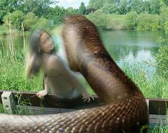 Alicia_Snake3 (tallteeth711) Tags: vore feet fetish legs damsel vorevids shoop snake fishvore toes nylons stockings